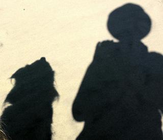 MJ walks her dog on the windy beach testimonial